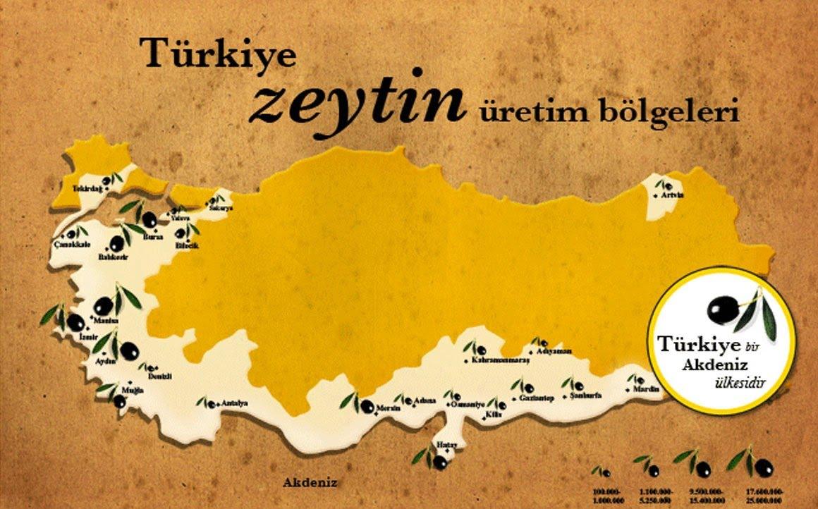 Harita: Zeytin ve Zeytinyağı Tanıtım Komitesi (ZZTK)
